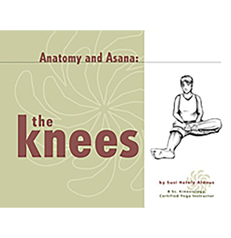 The Anatomy of the Knees - Functional Synergy